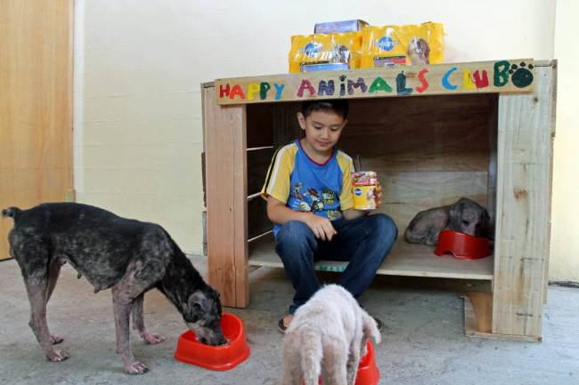 ad 136881457 Little Lad Rescues Dogs, Internet Responds In Amazing Way