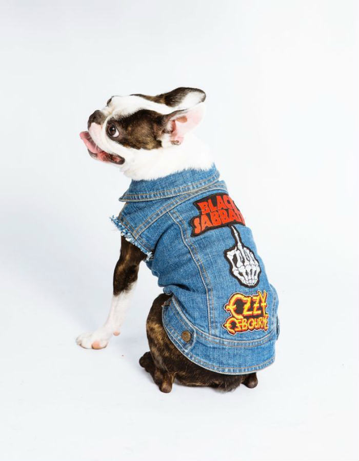 PAY Denim Dogs 1 Is Your Dog A Rocker, But Missing A Sleeveless Denim Jacket? Youre In Luck