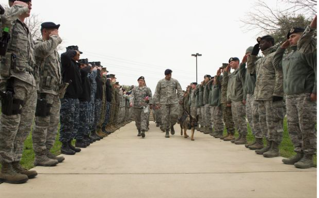 Army Dog Gets Tragic Send Off After Being Diagnosed With Terminal Cancer army