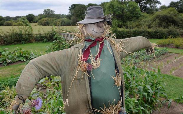 scarecrow Man Who Had Sex With A Scarecrow Is Found Dead