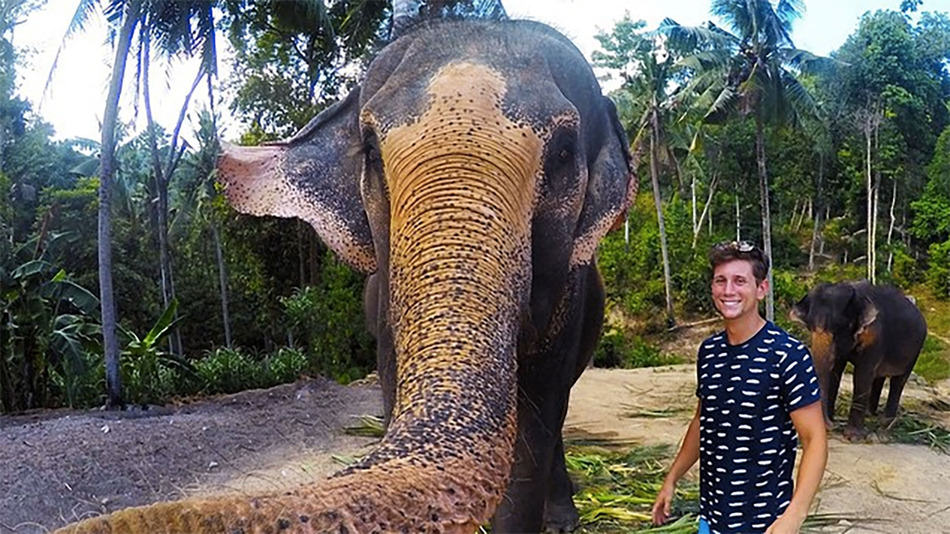 elfie Elephant Steals Lads Camera And Takes Epic Selfie
