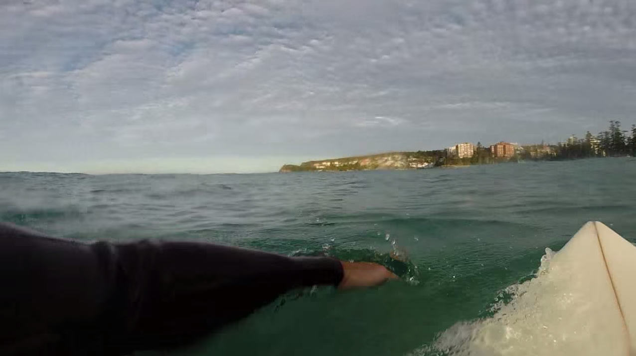 1128 Surfers GoPro Captures Great White Shark Circling Him In Sydney