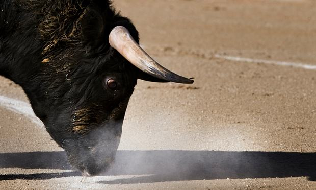 55b7acd4c18e2 Spanish Town Cancels Bullfighting To Spend Money On Something More Sensible