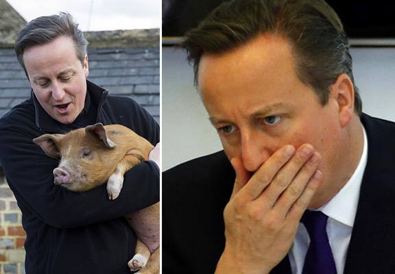 12029182 10153080115946631 1534001378 n1 The Internet Reacts To David Cameron Putting His Knob In Dead Pigs Mouth