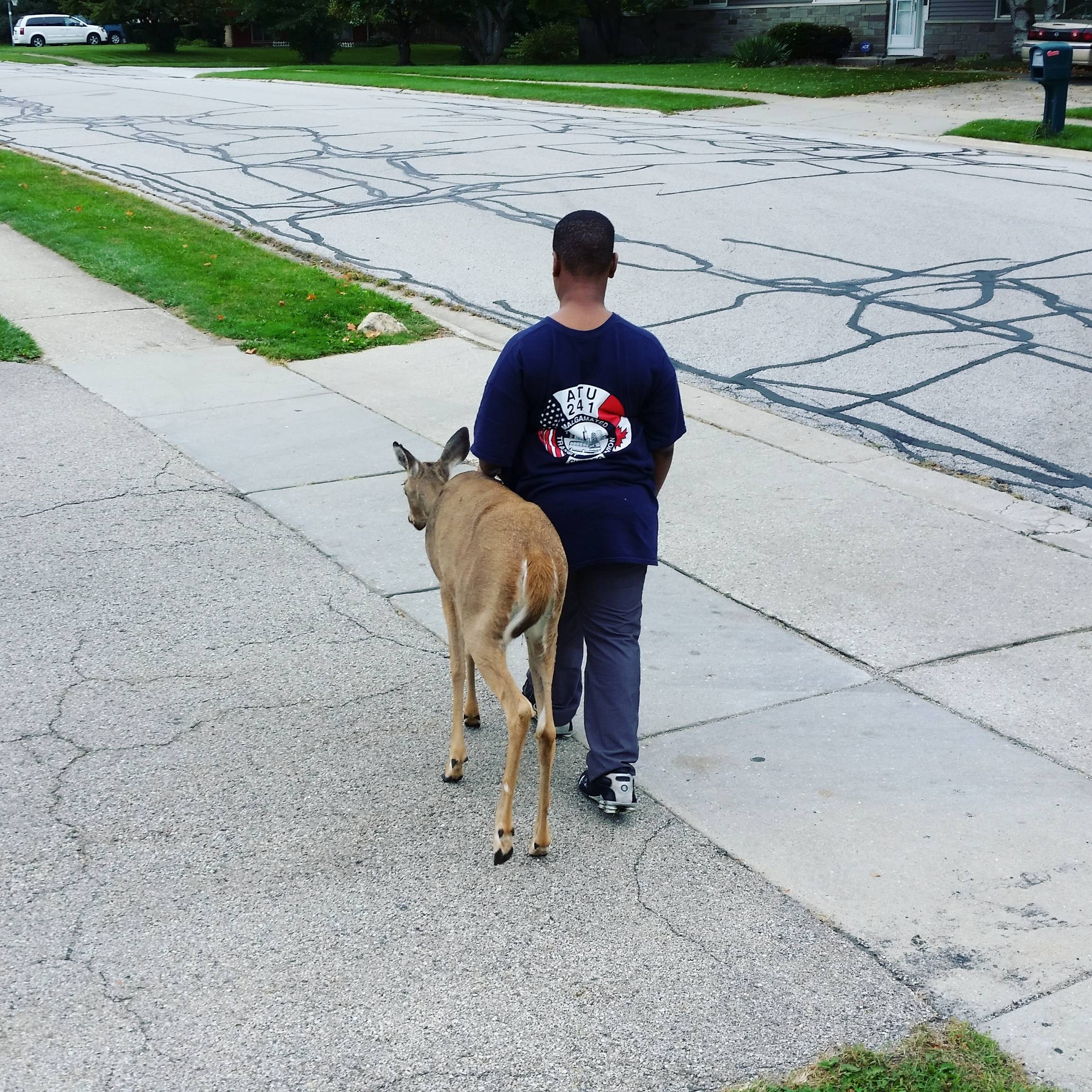 1SAeoTU This Heartwarming Photo Of A Boy Helping A Blind Deer To Eat Has Gone Viral