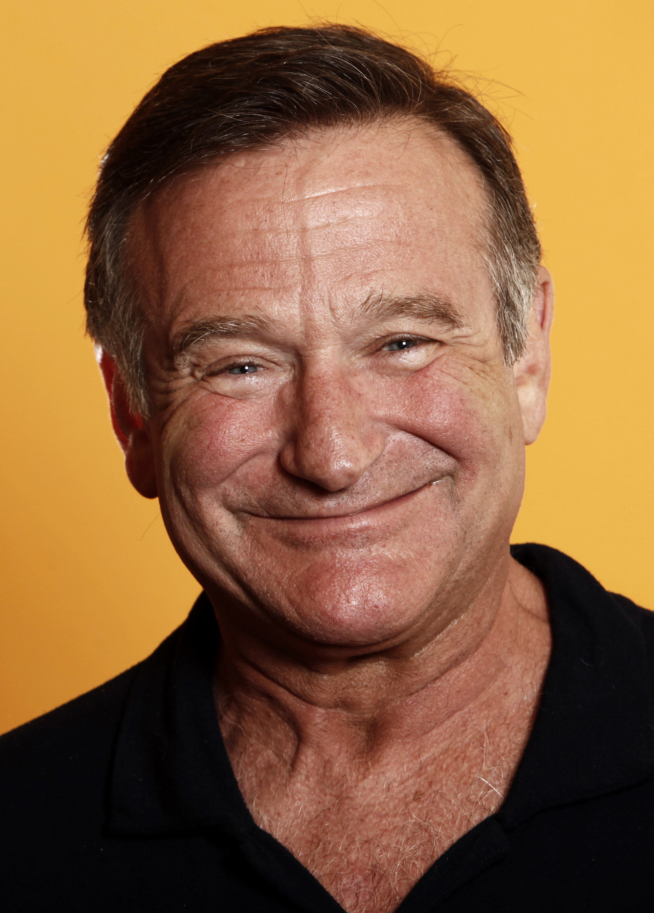 robin williams filmleri