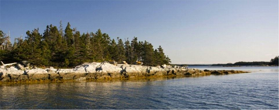UNILAD Charles Island 24 You Can Literally Buy These Private Islands For Less Than £250K
