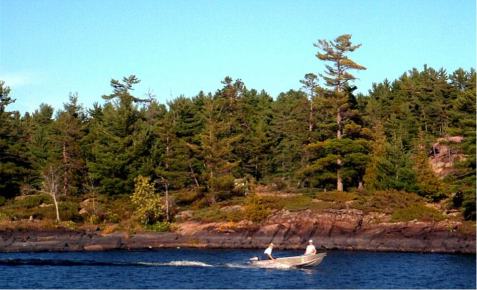 UNILAD Deer Bay French River Island4 You Can Literally Buy These Private Islands For Less Than £250K