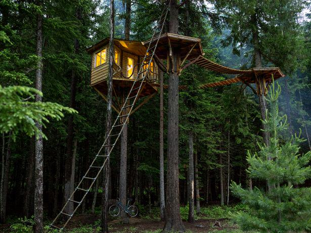 UNILAD treehouse12 These Amazing Cabins Will Make You Want To Quit Your Job And Move