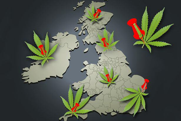 UNILAD weed116 No Surprises Which UK Area Wants To Legalise Cannabis