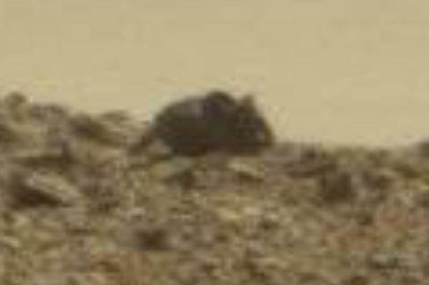 mouse monkey mars 1 Giant Mouse And Monkey Spotted On Surface Of Mars, Apparently