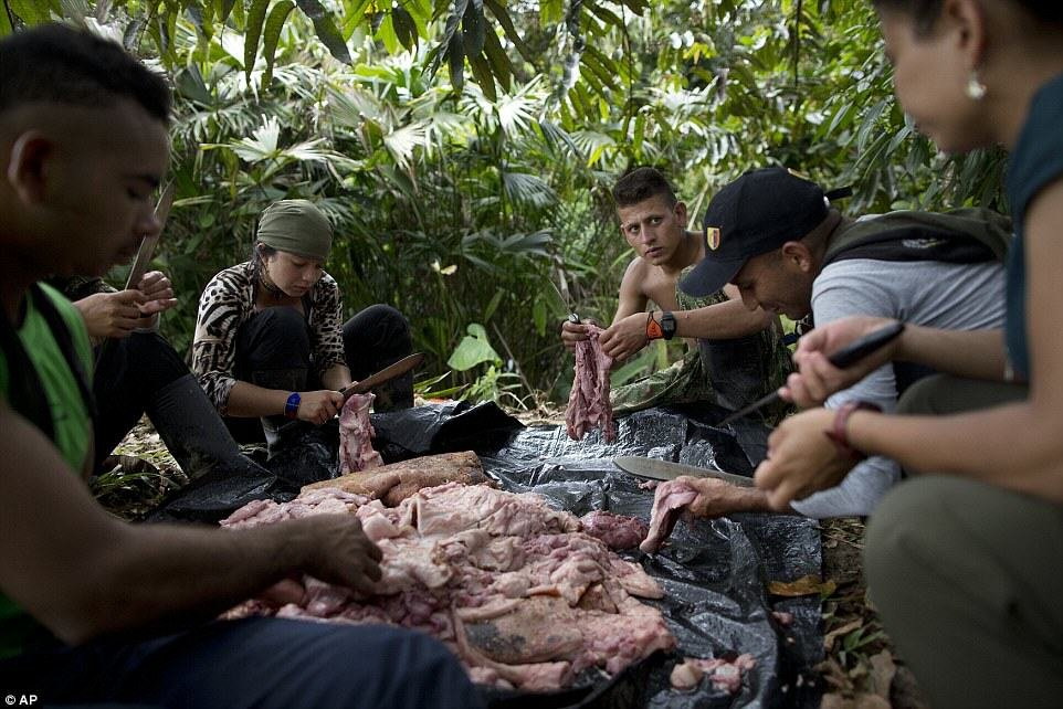 These Incredible Rare Photos Show Life Inside A FARC Jungle Camp farc2