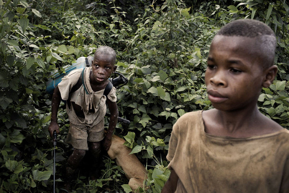 Nestle Being Sued Over Child Slavery Allegations nestle3