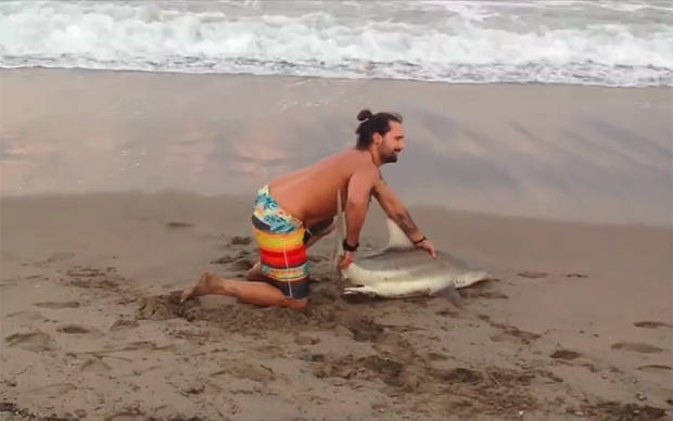 Man Drags Shark From The Sea Just To Pose For Photos image