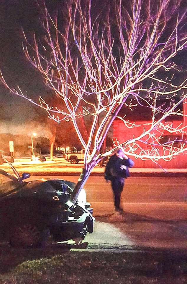 12697148 1100273976662865 6416505662565545281 o Watch Woman Get Pulled Over With Massive Tree Stuck In Her Car