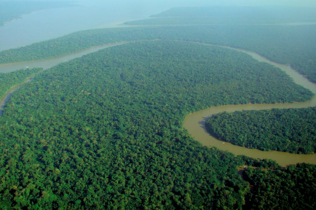 Aerial view of the Amazon Rainforest 1200x800 Amazonian Tribe Seizes Military Helicopter, Kidnaps Government Official