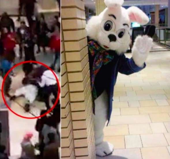 bunny1 Video Shows Brutal Brawl Between Easter Bunny And Shoppers
