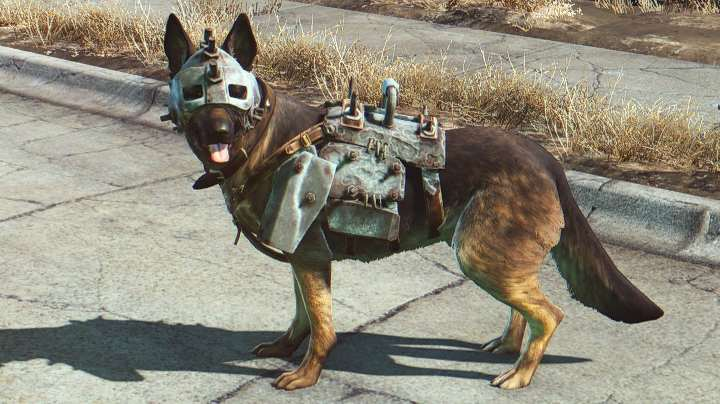 dogmeat dog armor New Fallout 4 Mod Lets You Play As Dogmeat