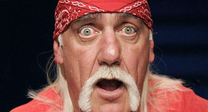 Hulk Hogan Might Not Have Won That Gawker Case Just Yet hogan appeal FB