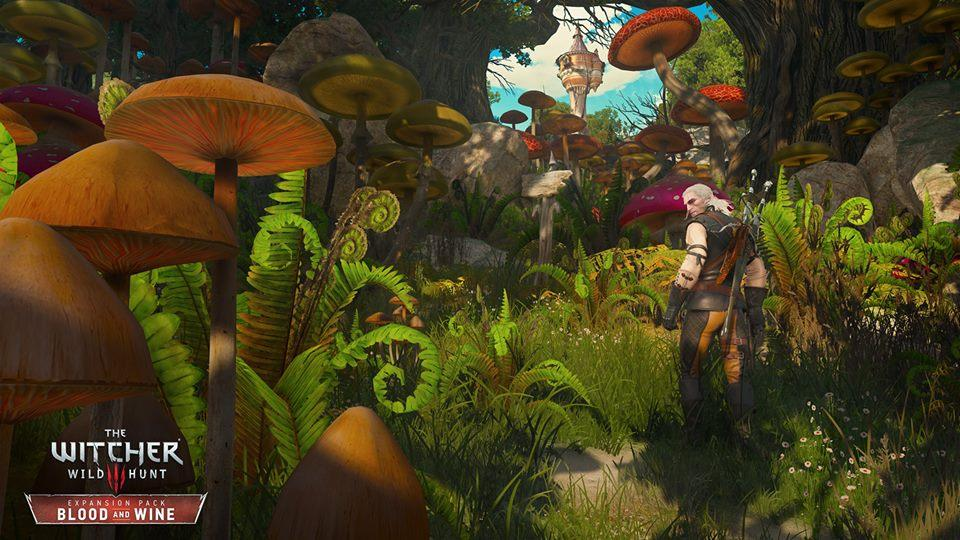 3052286 3 Witcher 3 Blood And Wine DLC Gets Gorgeous New Screens