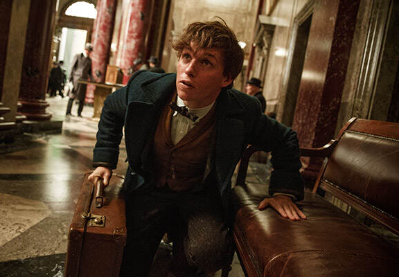Fantastic beasts featured Fantastic Beasts Is A Delightful Introduction To The U.S. Wizarding World