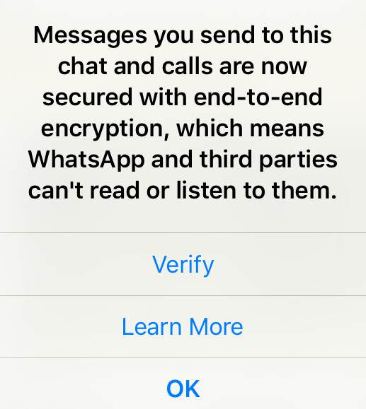 whatsapp Dont Worry If  You See This Message On WhatsApp