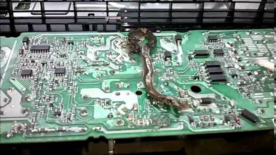 2016 05 26 7c sddefault.64924 Electrician Finds Worst Thing Imaginable Inside PlayStation 4
