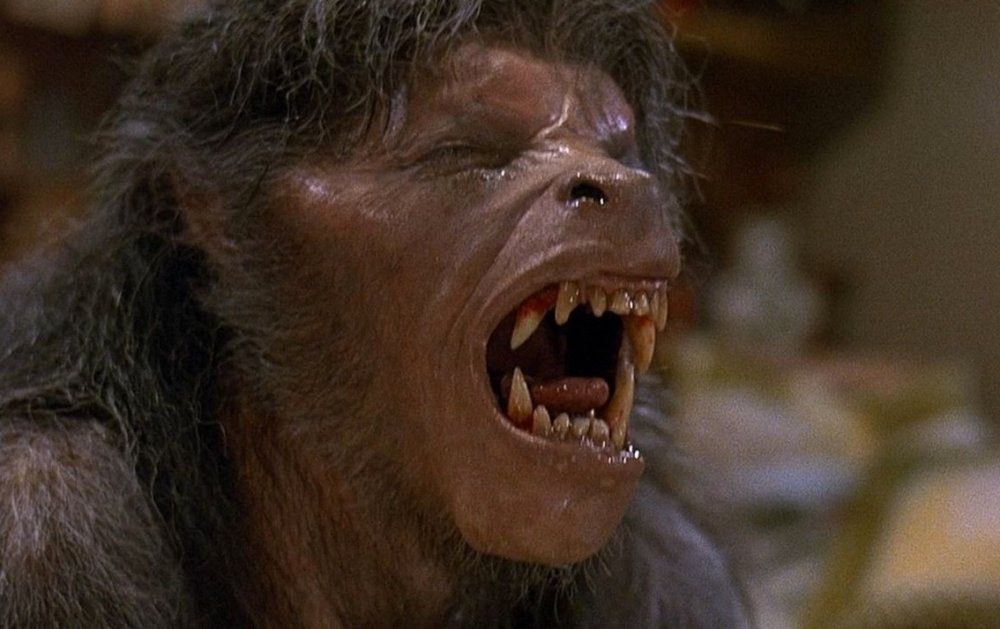 american werewolf in london an 1981 004 wolf groan Rock Star Pisses Off Whole City With Werewolf Facebook Question