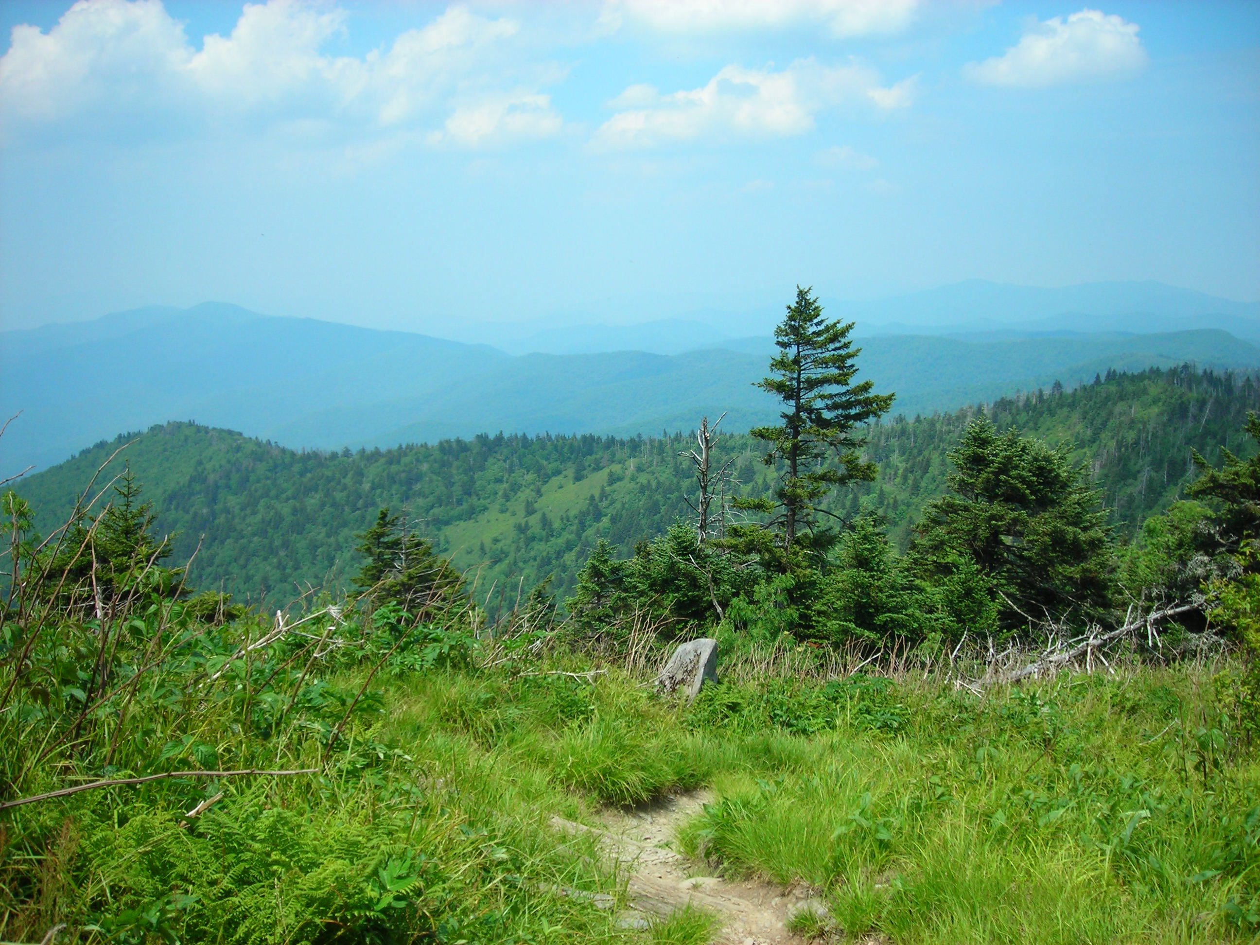 Appalachian Trail Heading to Double Springs Gap From Clingmans Dome