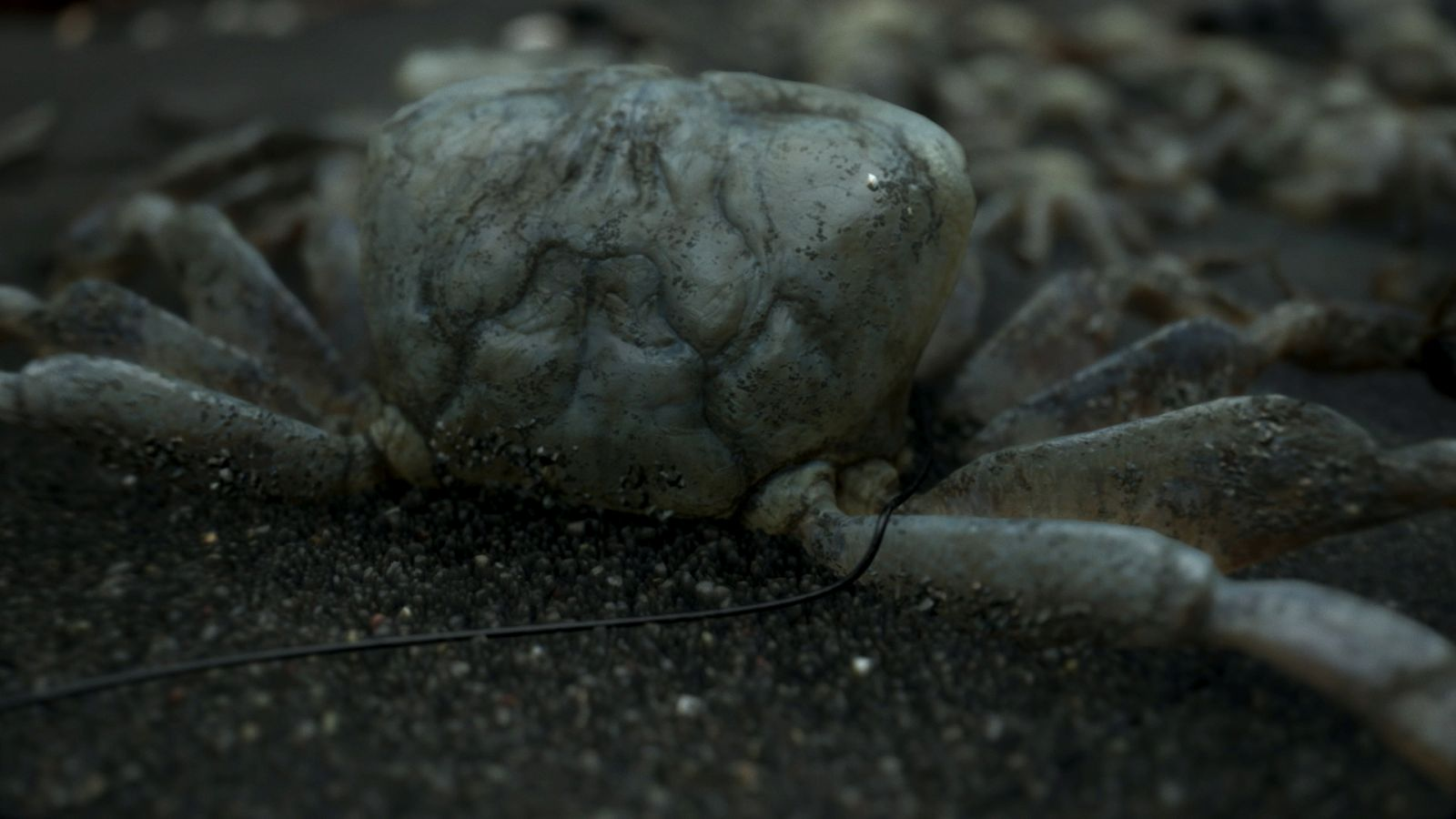 DeathStranding Screen PS4 003 1465877394 Kojima Shoots Down Several Death Stranding Theories