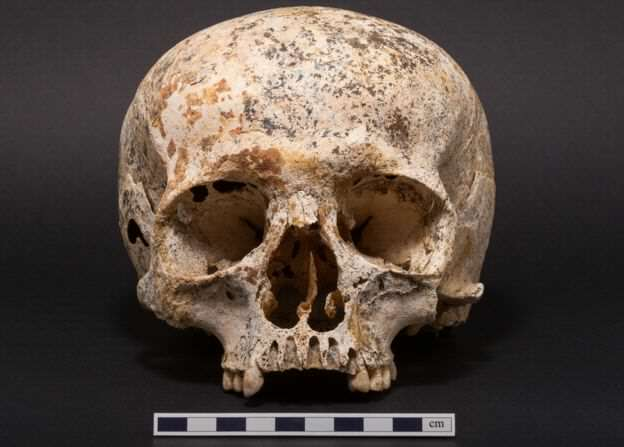 90558425 skullone Face Of Mystery Teen Girl Who Died 3,700 Years Ago Finally Revealed