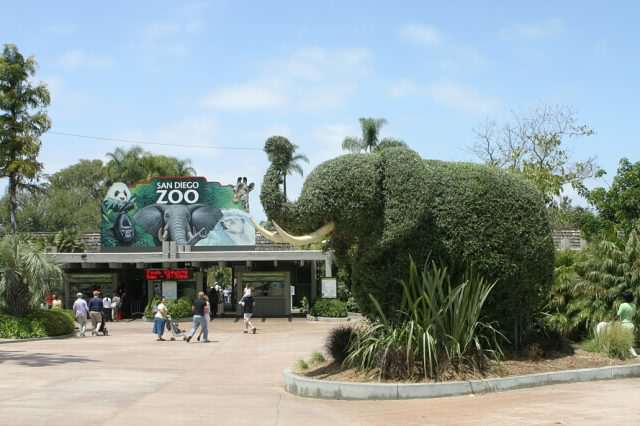 San Diego Zoo entrance elephant 640x426 Prankster Brilliantly Trolls Zoo With Made Up Animal Facts