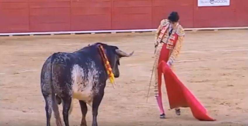 ethical questions about bullfighting Peru debates 'sport' of bullfighting  yuksel flees questions  com's original reporting and curation of border and immigration news is generously supported in part by a grant from the ethics.