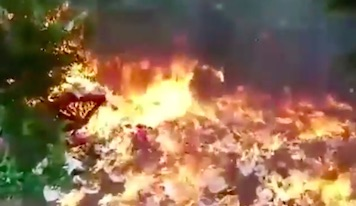 bomb3 Guy Destroys Garden With Massive Explosion In Bizarre Stunt Gone Wrong