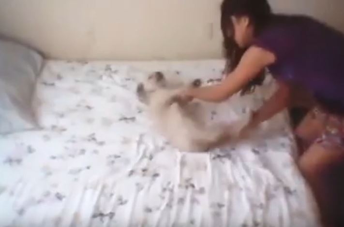 Teen Films Herself Smiling While Abusing Puppy In Sick Video pic 1 1