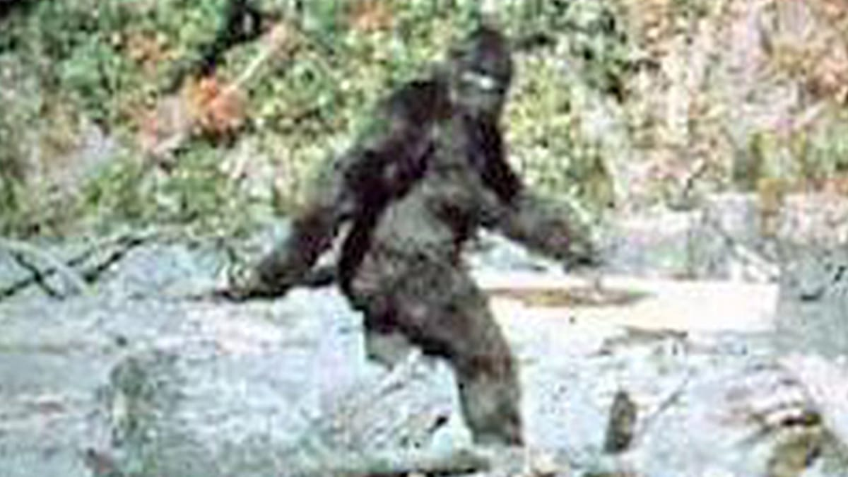 28426UNILAD imageoptim bigfoot1 Footage Shows Bigfoot Walking Through Waterfall