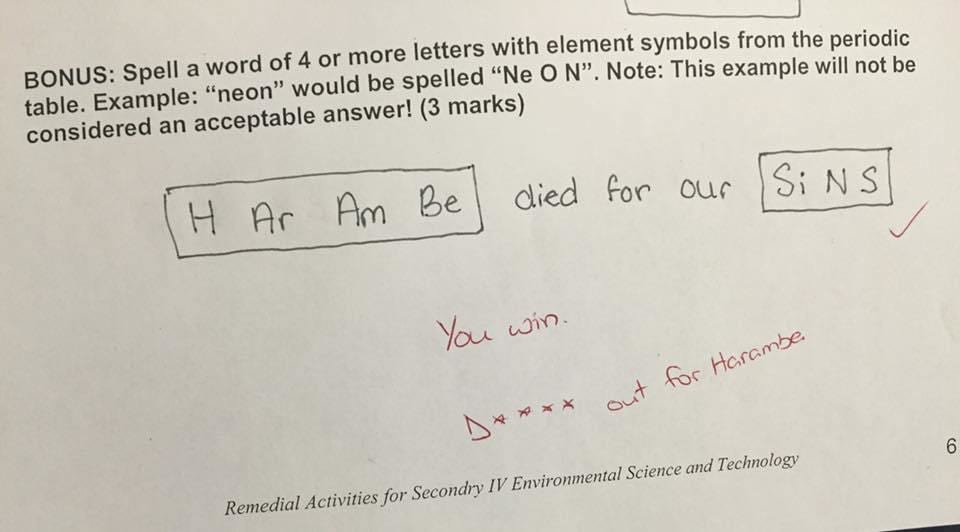 Badass Teacher Responds To Teens Harambe Test Answer In Best Way 48784UNILAD imageoptim Dicks Out For Harambe
