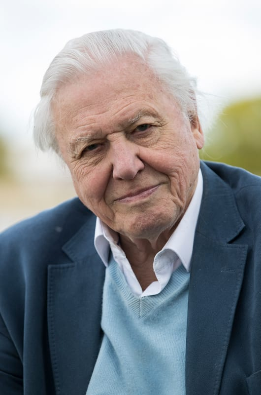 29661UNILAD imageoptim GettyImages 526495612 David Attenborough Receiving Death Threats After Controversial Joke