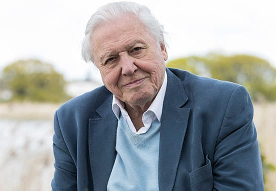 David Attenborough Receiving Death Threats After Controversial Joke