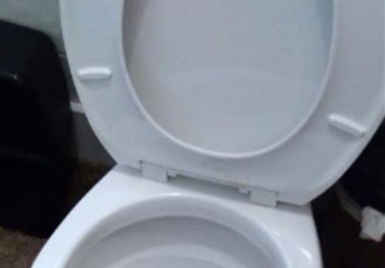 Family Makes NOPEST Discovery Imaginable Under Their Toilet